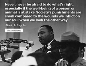 """Never, never be afraid to do what's right, especially if the well-being of a person or animal is at stake. Society's punishments are small compared to the wounds we inflict on our soul when we look the other way."" --Martin L. King, Jr."