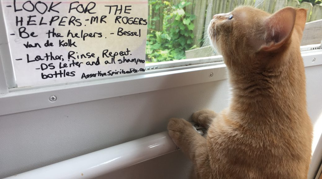 """[Cat looks out screen door, sniffing next to card:] """"Look for the helpers."""" --Mr. Rogers """"Be the helpers."""" --Bessel Van der Kolk """"Lather, Rinse, Repeat."""" --DS Leiter and All Shampoo Bottles (AssertiveSpirituality.com)"""